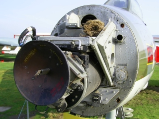 Hunter Radar with birds nest